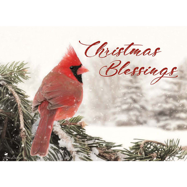 Legacy Winter Cardinal Boxed Christmas Cards