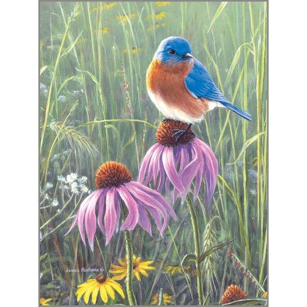 Legacy Bluebird in Prairie Note Card Set