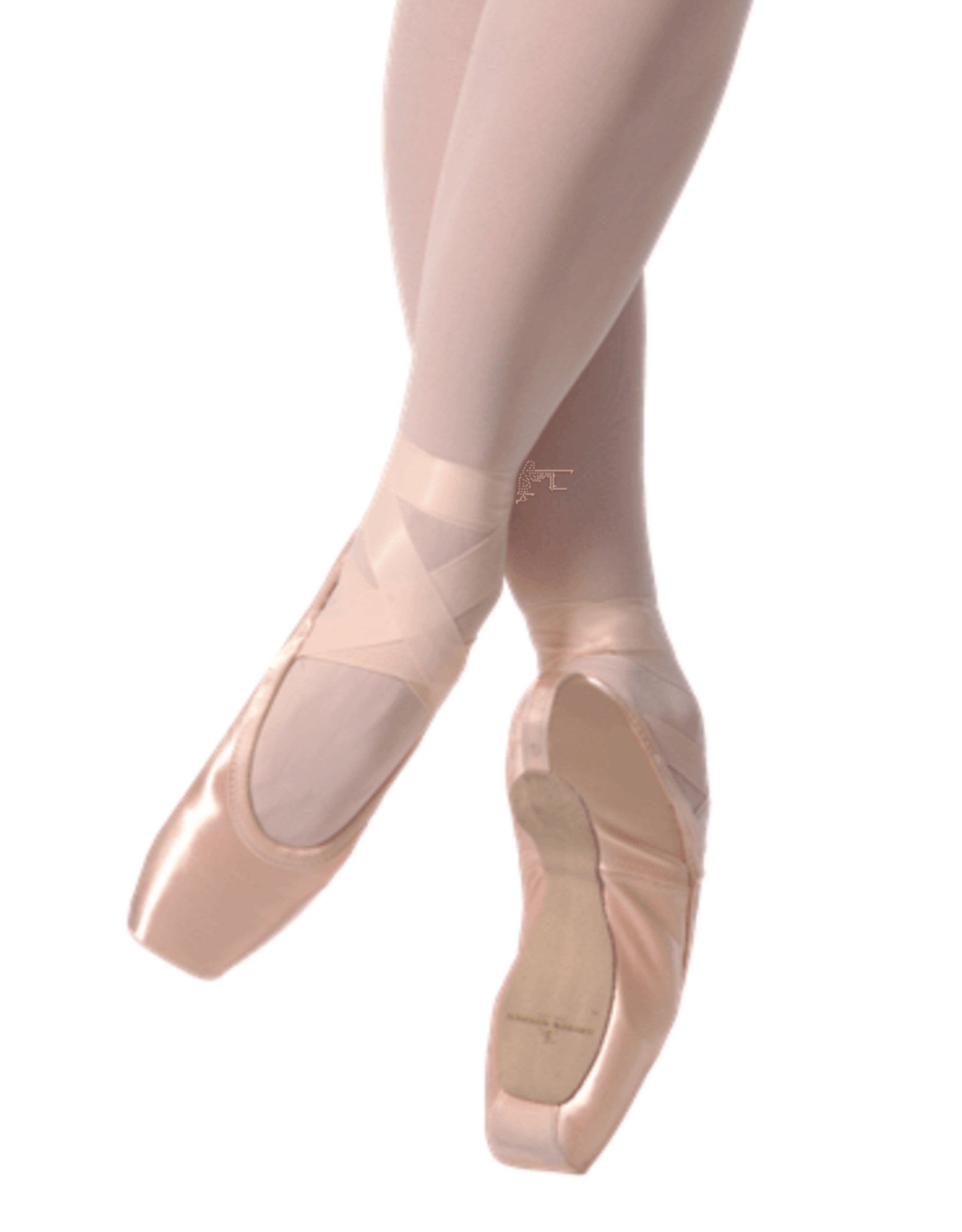 GAYNOR MINDEN CLASSIC FIT EXTRAFLEX SHANK DEEP VAMP HIGH HEEL POINTE SHOES