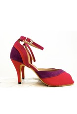 SALSA/TANGO SLIM HEEL DANCE SHOES (STS102)