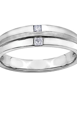 10K White Gold (0.15ct) Diamond Men's Band