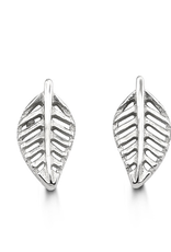 White Gold Leaf Stud Earrings