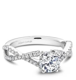 Noam Carver Noam Carver Diamond Mount