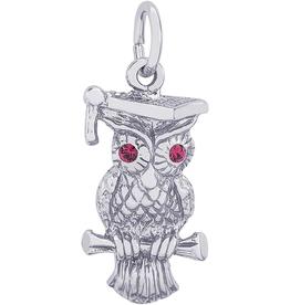 Nuco Graduation Owl Charm