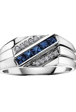 10K White Gold Blue Sapphire and Diamonds Men's Ring