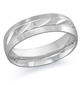 10K White Gold (6mm) Mens  Band