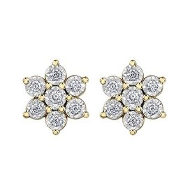 10K Yellow & White Gold (0.30ct) Diamond Earrings