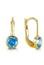 10K Yellow Gold December Birthstone Earrings