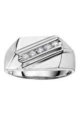 10K White Gold (0.20ct) Diamond Diagonal Channel Set Men's Ring