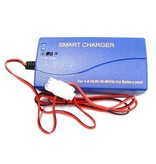 AA Portable Power AAP Multi Current Smart Charger