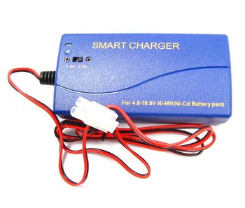 AA Portable Power Multi Current Smart Charger