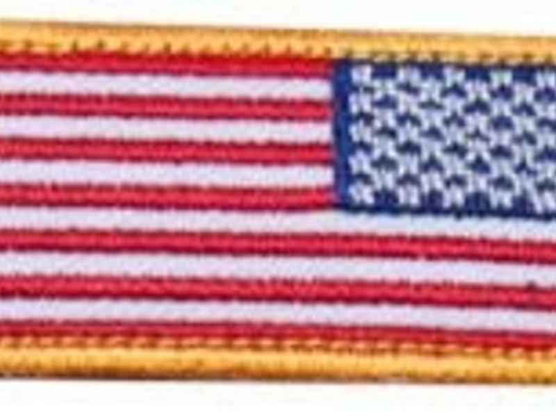 PTS US Mini Flag Reverse
