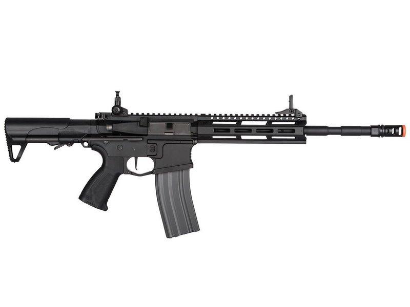 G&G G&G CM16 Raider L 2.0E (DEANS)