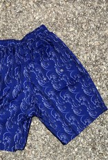 Polar Art Swim Short blue