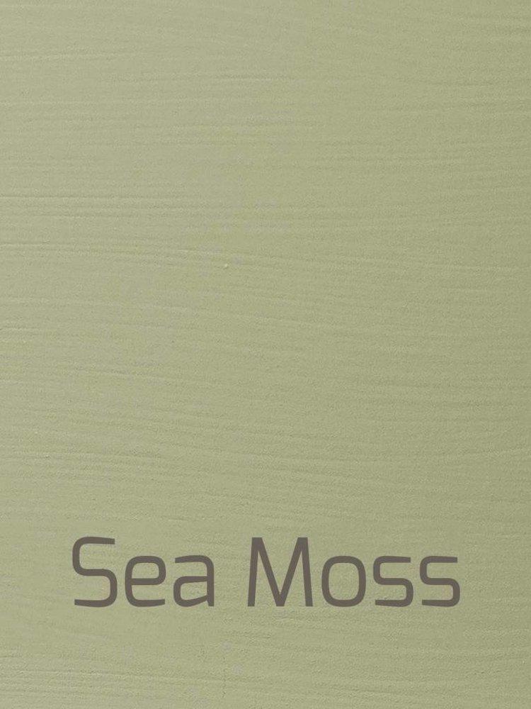 Autentico Vintage furniture paint, color  Sea Moss