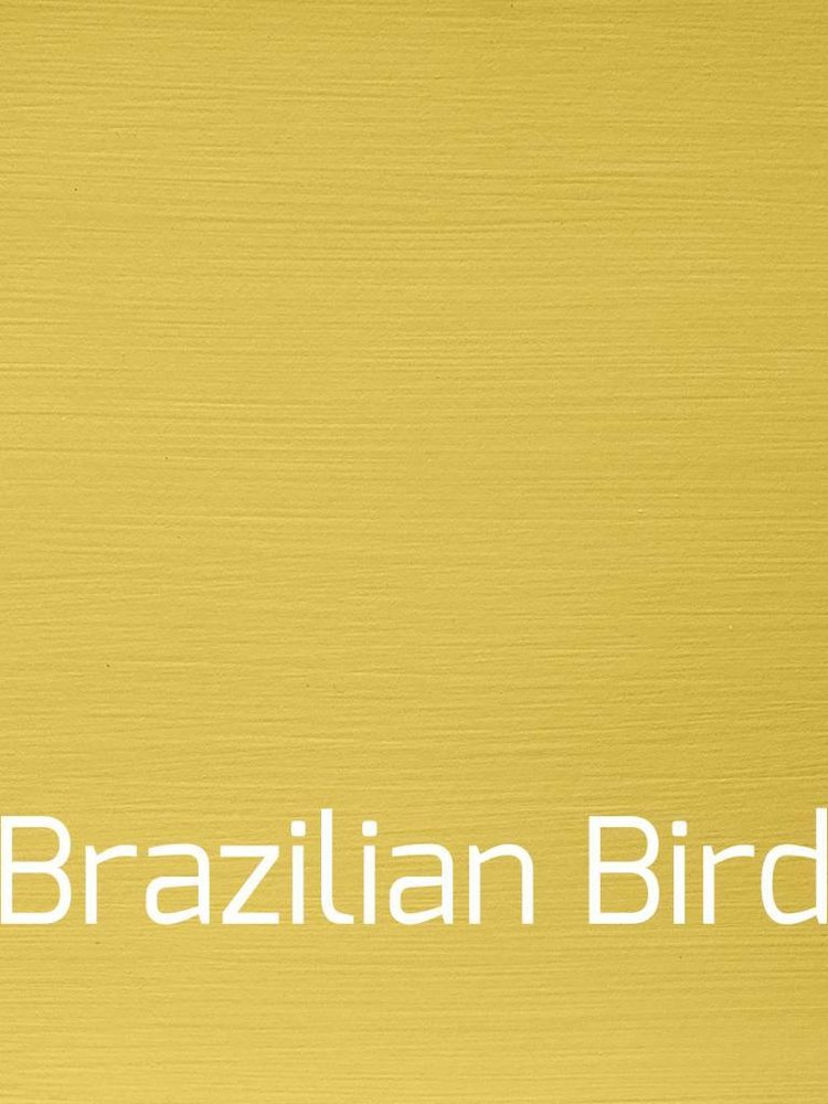 Versatile, washable paint for inside and outside, color Brazilian Bird