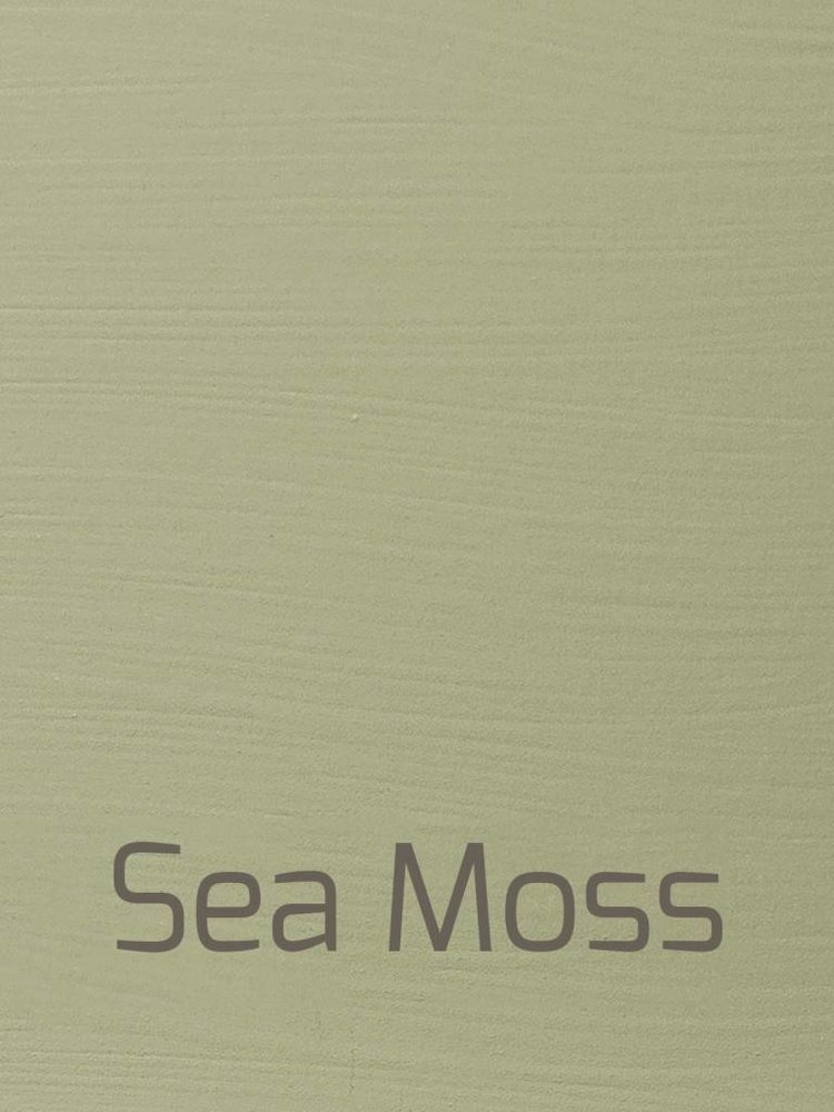 Versante, washable paint for inside and outside, color Sea Moss