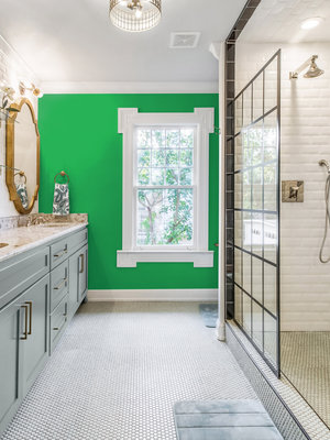 Versatile, washable paint for inside and outside, color Bright Green