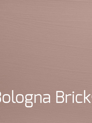Versatile, washable paint for inside and outside, color Bologna Brick