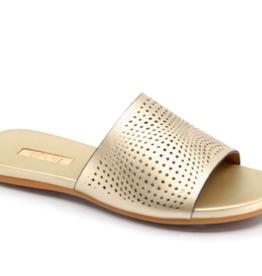 Taxi Monika Perforated Slide Sandal Gold
