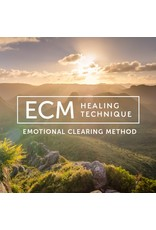 Emotional Healing Consultation