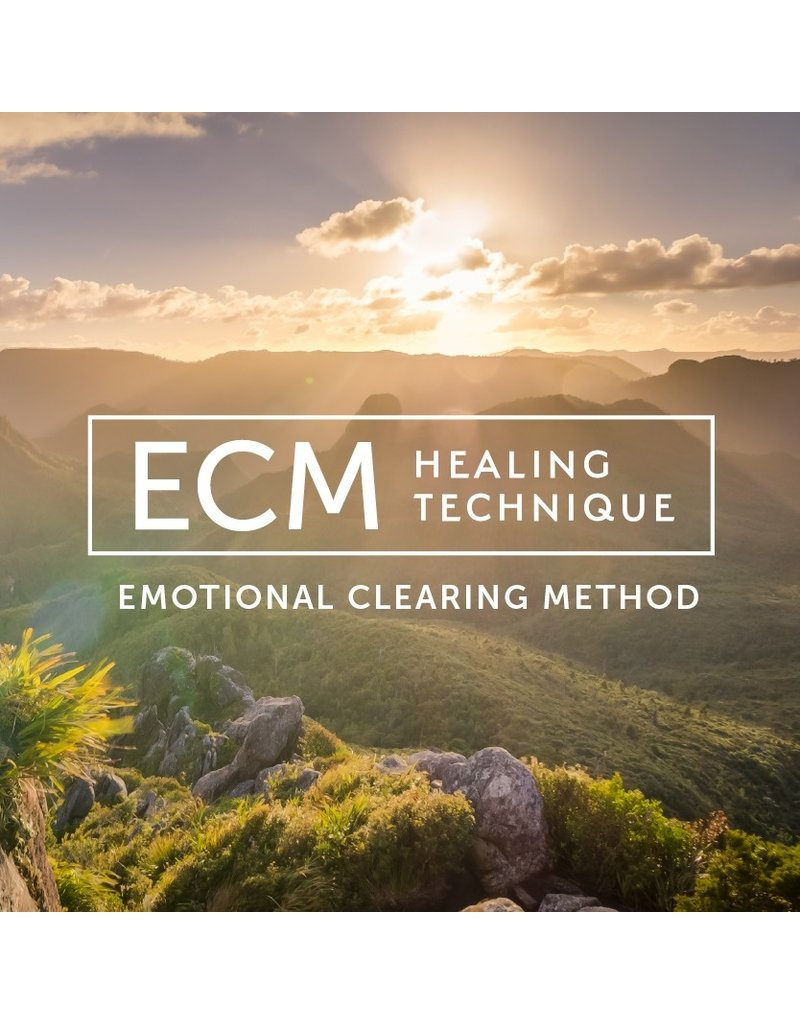 Emotional Healing Consultation (In-Person or Via Zoom)