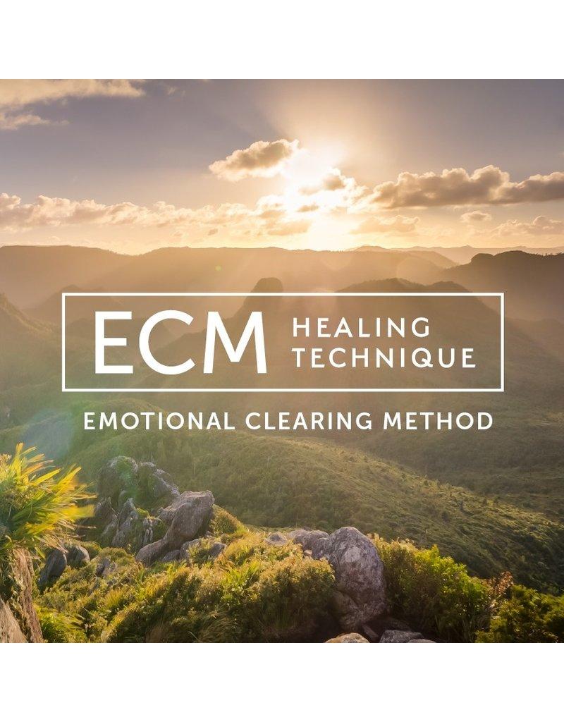 Emotional Healing Program Consultation