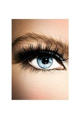Eyelash Extension | Full or Fill