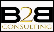 B2B Consulting Services