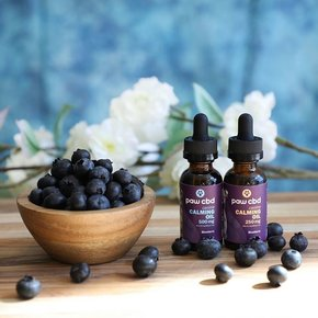 cbdMD | CBD CALMING OIL FOR DOGS | BLUEBERRY | 2 LEVELS |