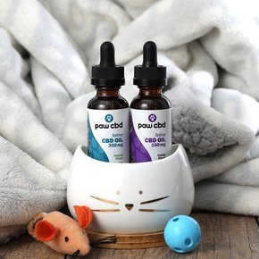 cbdMD | PAW CBD OIL FOR CATS | 2 LEVELS |