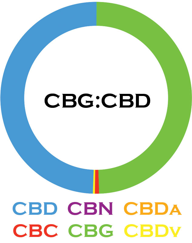 3 CHi | 3 CHi | CBG:CBD TINCTURES | 2 LEVELS |