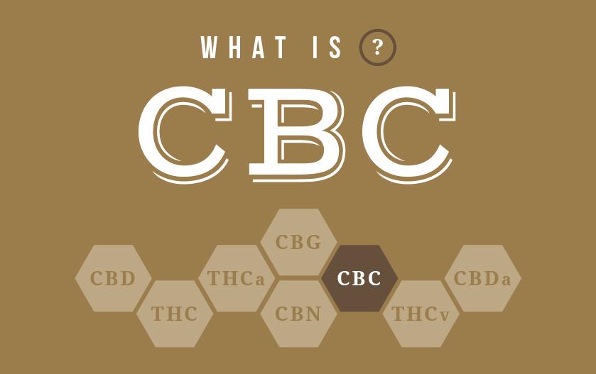 CBC OPTIONS