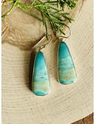 Green Opal Petrified Fossil Wood Earrings