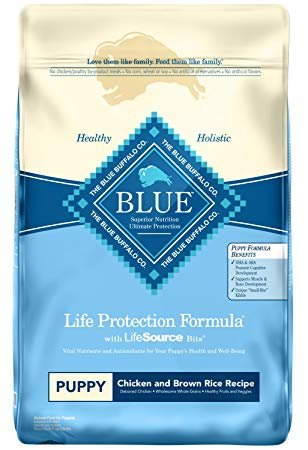 Blue Buffalo Life Protection Formula Puppy Chicken & Brown Rice Recipe Dry Dog Food