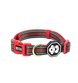 Fresh Pawz G-Stripe Dog Collar