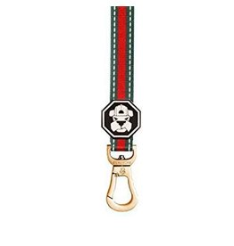 Fresh Pawz G-Stripe Dog Leash