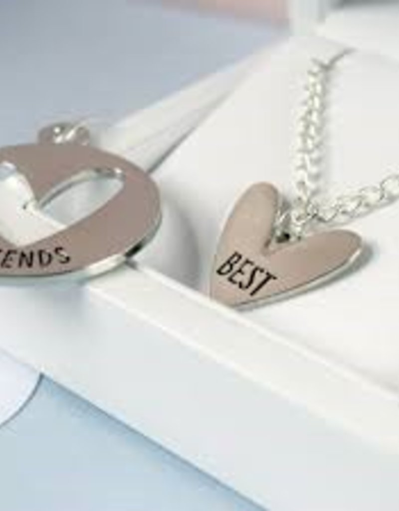 House of Wonderland Necklace & Pet Charm Set - Best (Human) & Friend (Pet)