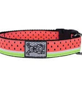 RC Pet Products Watermelon Sound Dog Collar