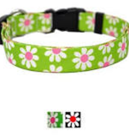 Sweet Pickles Designs The Daisy Cat Collar