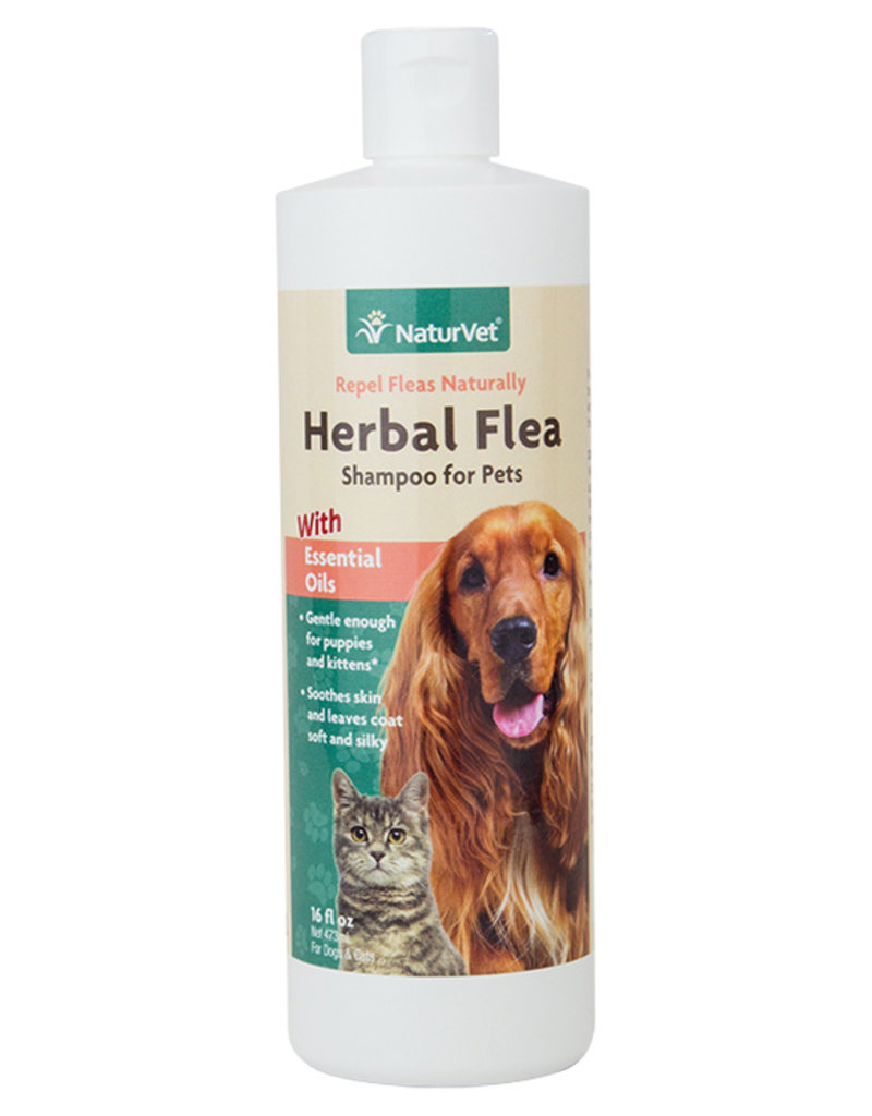 NaturVet Herbal Flea Dog & Cat Shampoo, 16 oz