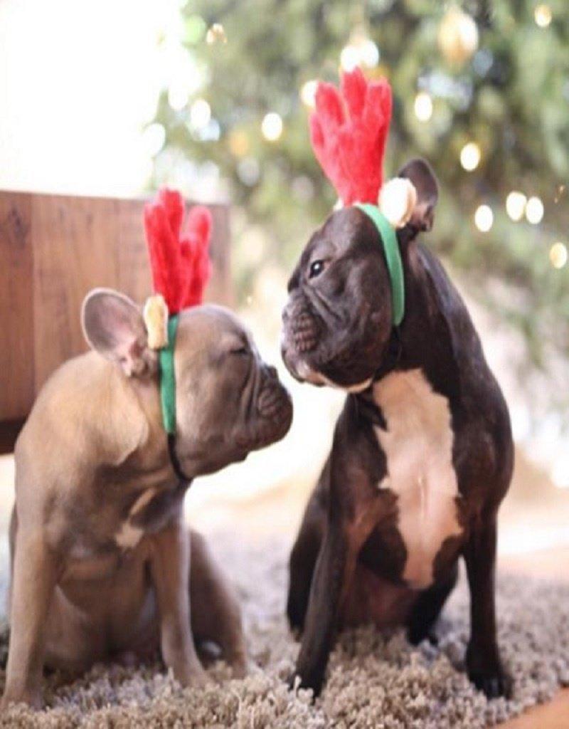 Zippy Paws Holiday Dog Antlers