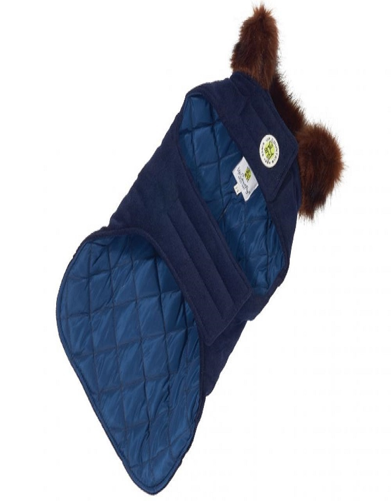 Up Country Dressy Blue Velvet Dog Coat