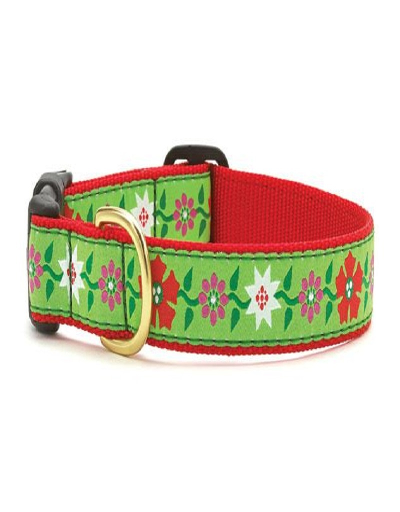 Up Country Poinsettia Dog Collar