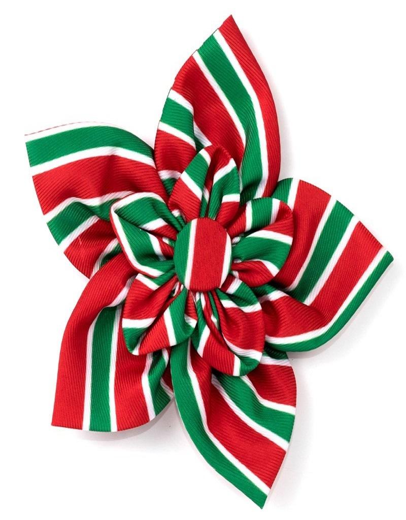 The Worthy Dog Holiday Stripe Pinwheel