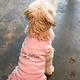 City Bark J'aime Detroit Pink Dog Dress