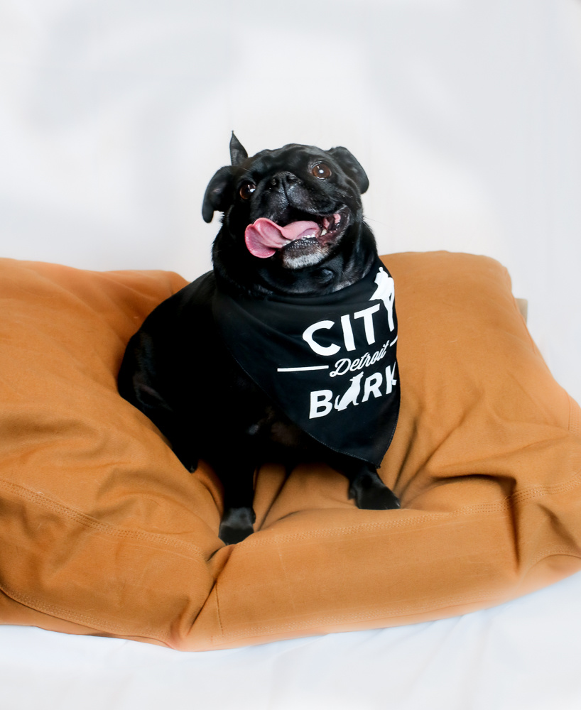 City Bark City Bark Detroit Black Dog Bandana