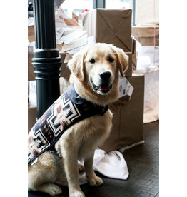 Carolina Pet Company Harding Dog Coat