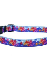 Yellow Dog Design Coral Reef Dog Collar