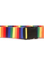 Yellow Dog Design Rainbow Stripe Collar